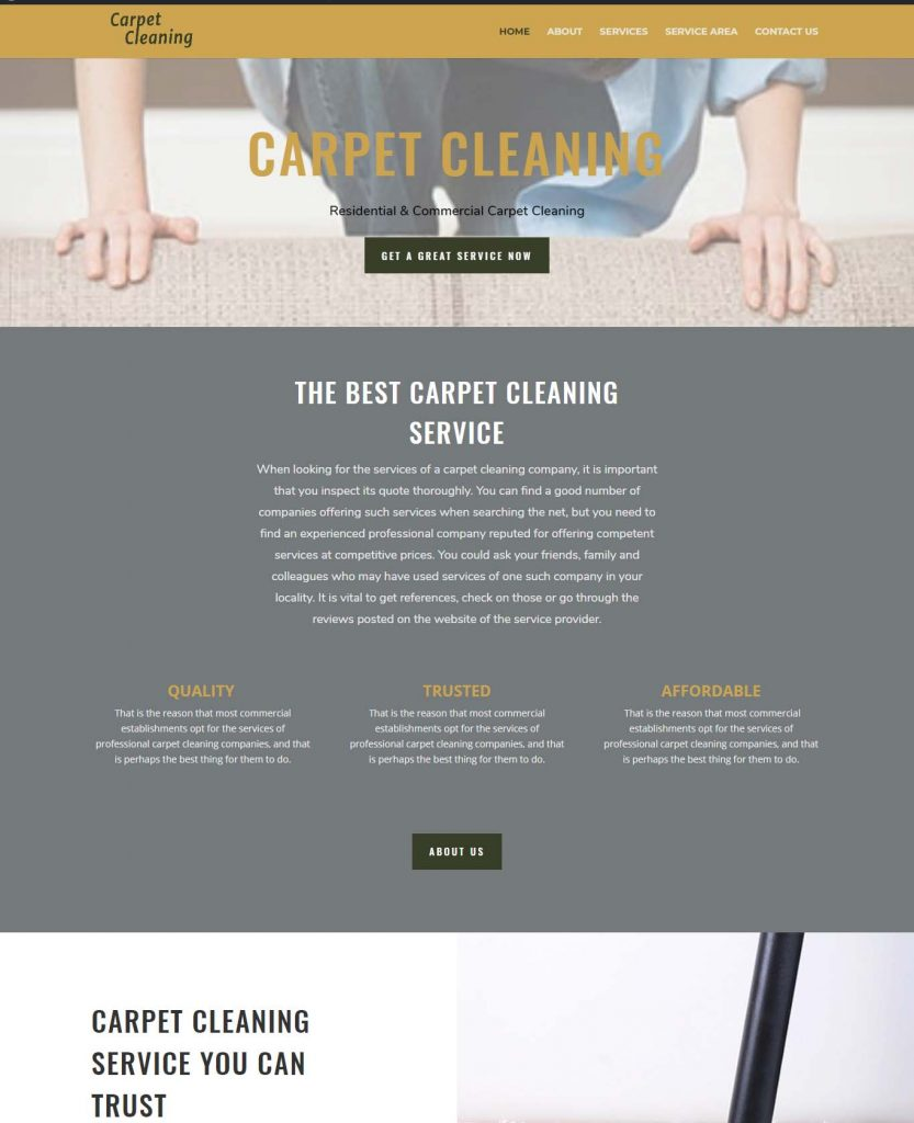 carpet-cleaning-proffesional